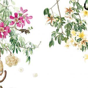 CEIBA Carta da Parati Botanica
